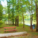 Lakeside Picnic Areas Soaring Eagle Campground