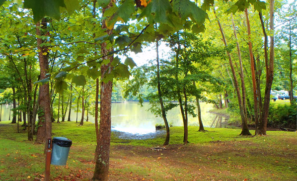 Riverside Campsites at Soaring Eagle Campgrounds